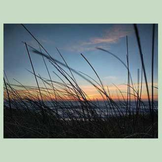 HOW Campers - Instagram - Beach